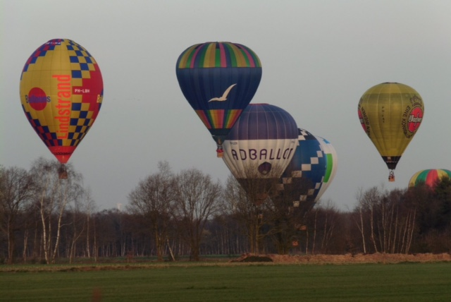 ad balloncup 2